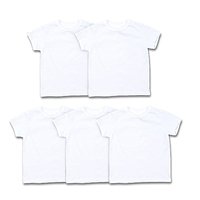 Hanes Boys Undershirts 5 Pack ComfortSoft Short Sleeve Crewneck Tagless Undershirts (Little Boys & Big Boys) at Walmart - $6.00 in 33% of stores